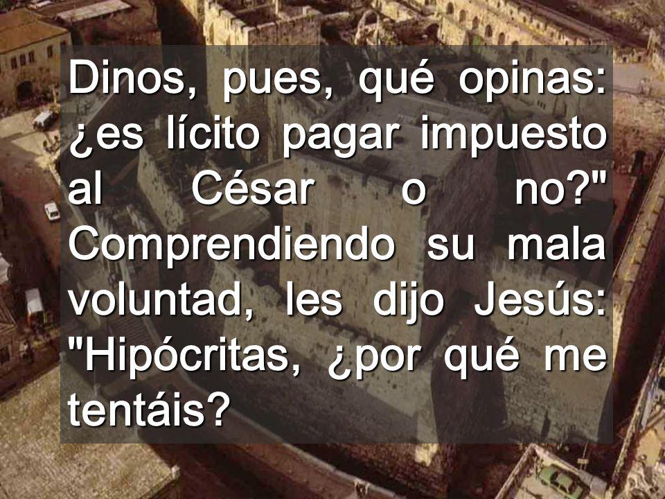 Dinos, pues, qué opinas: ¿es lícito pagar impuesto al César o no? Comprendiendo su mala voluntad, les dijo Jesús: Hipócritas, ¿por qué me tentáis?