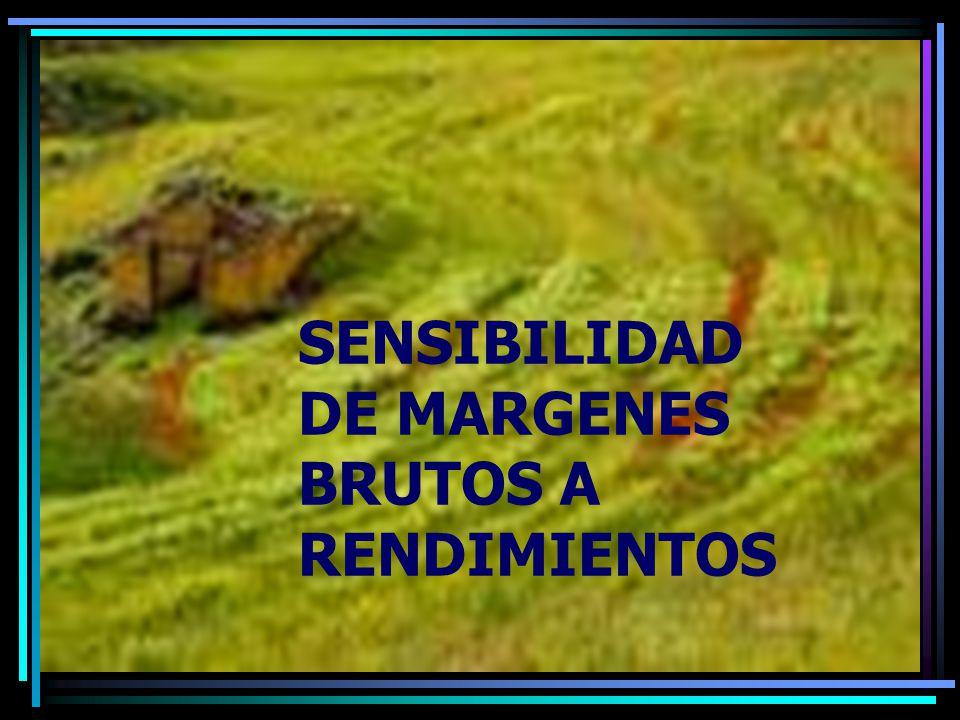 SENSIBILIDAD DE MARGENES BRUTOS A RENDIMIENTOS