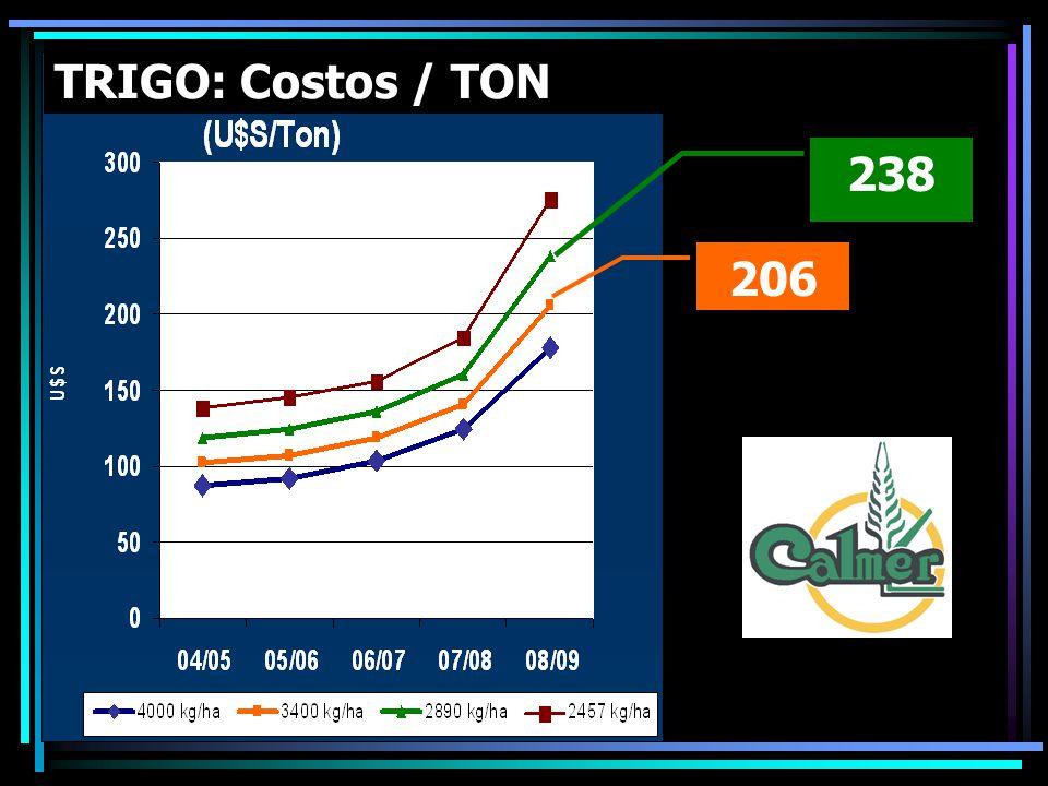 238 206 TRIGO: Costos / TON