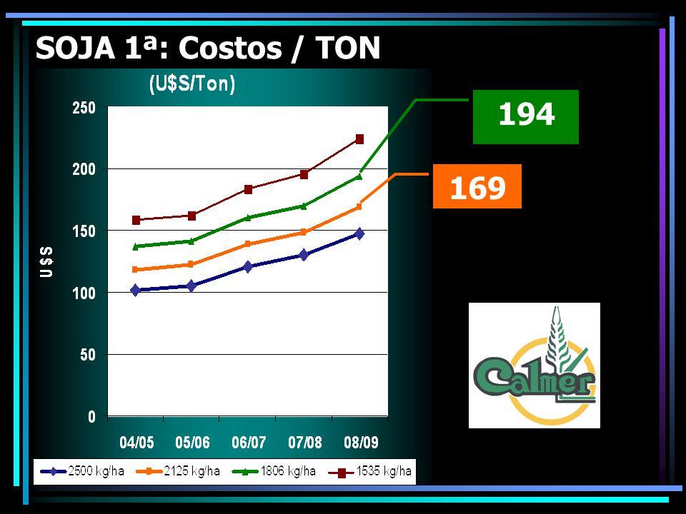 194 169 SOJA 1ª: Costos / TON