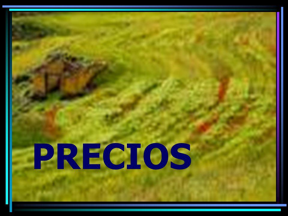 EVOLUCION DEL PRECIO DEL TRIGO F.: Bautes, C.