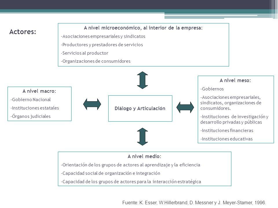 A nivel microeconómico, al interior de la empresa: -Asociaciones empresariales y sindicatos -Productores y prestadores de servicios -Servicios al productor -Organizaciones de consumidores A nivel macro: -Gobierno Nacional -Instituciones estatales -Órganos judiciales A nivel medio: -Orientación de los grupos de actores al aprendizaje y la eficiencia -Capacidad social de organización e integración -Capacidad de los grupos de actores para la interacción estratégica A nivel meso: -Gobiernos -Asociaciones empresariales, sindicatos, organizaciones de consumidores.