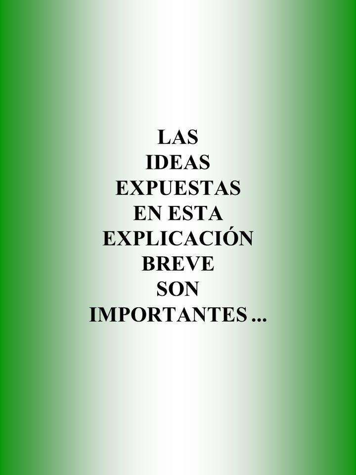 LAS IDEAS EXPUESTAS EN ESTA EXPLICACIÓN BREVE SON IMPORTANTES...