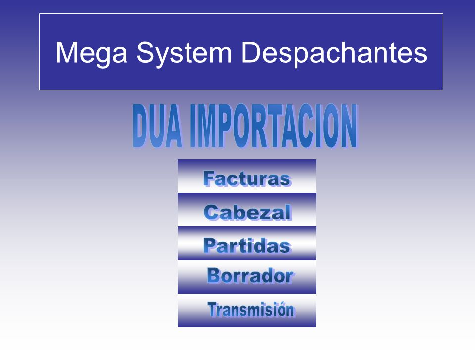 Datos de Partidas / Ingresos Mega System Despachantes Alta de Partidas – Descripción, Datos de Carga : Siguiente