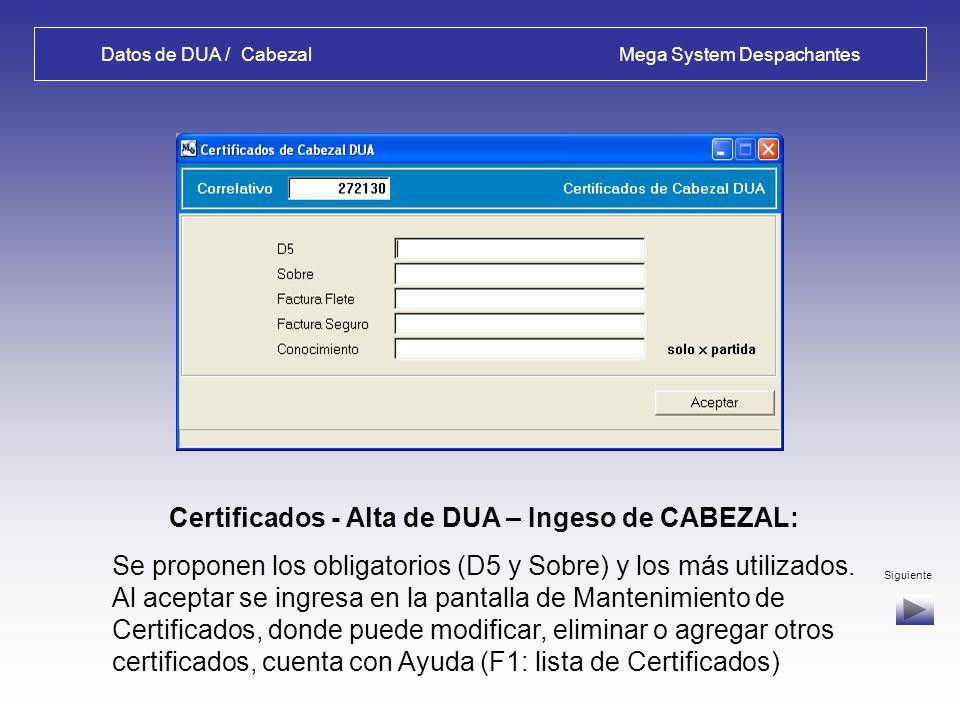 Datos de DUA / Cabezal Mega System Despachantes Contenedores - Alta de DUA – Ingeso de CABEZAL: Se deben ingresar de acuerdo al formato indicado Siguiente