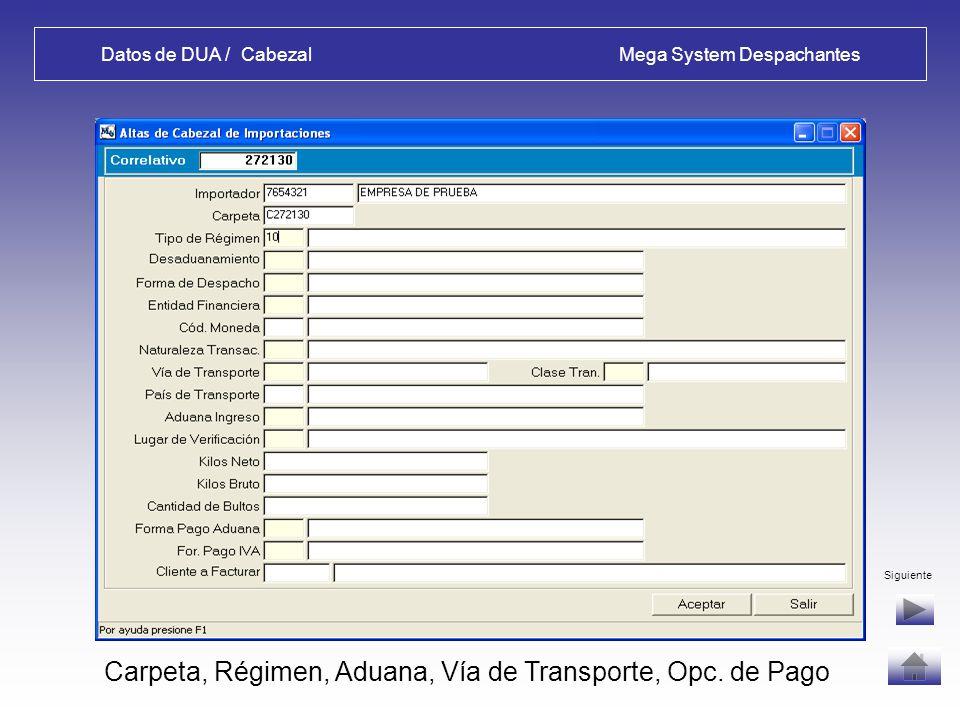 Datos de Facturas / Items Mega System Despachantes Salida de Alta de Factura - OPCIONES: Volver: permite corregir errores, luego Ingresar Cabezal DUA Otra Factura: para operaciones con más de una factura, mercaderías iguales se pueden agrupar o no.