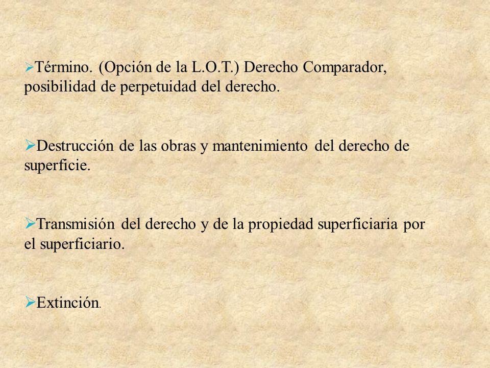 Término. (Opción de la L.O.T.) Derecho Comparador, posibilidad de perpetuidad del derecho. Destrucción de las obras y mantenimiento del derecho de sup