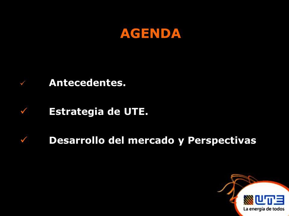 AGENDA Antecedentes. Estrategia de UTE. Desarrollo del mercado y Perspectivas