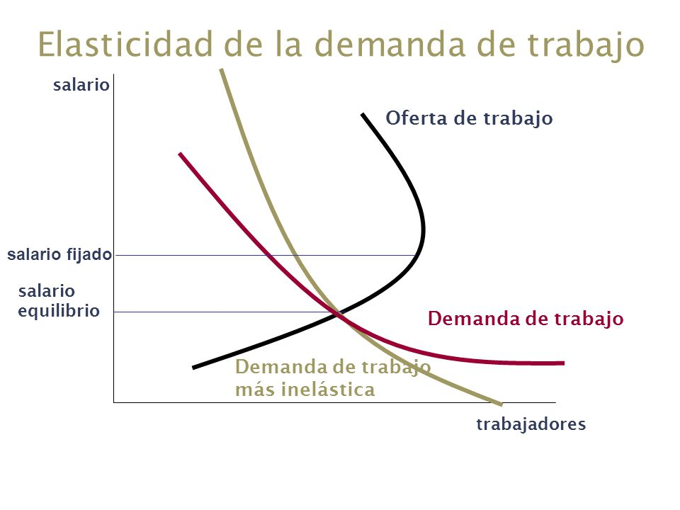 Elasticidad de la demanda de trabajo salario trabajadores Oferta de trabajo Demanda de trabajo salario equilibrio Demanda de trabajo más inelástica sa