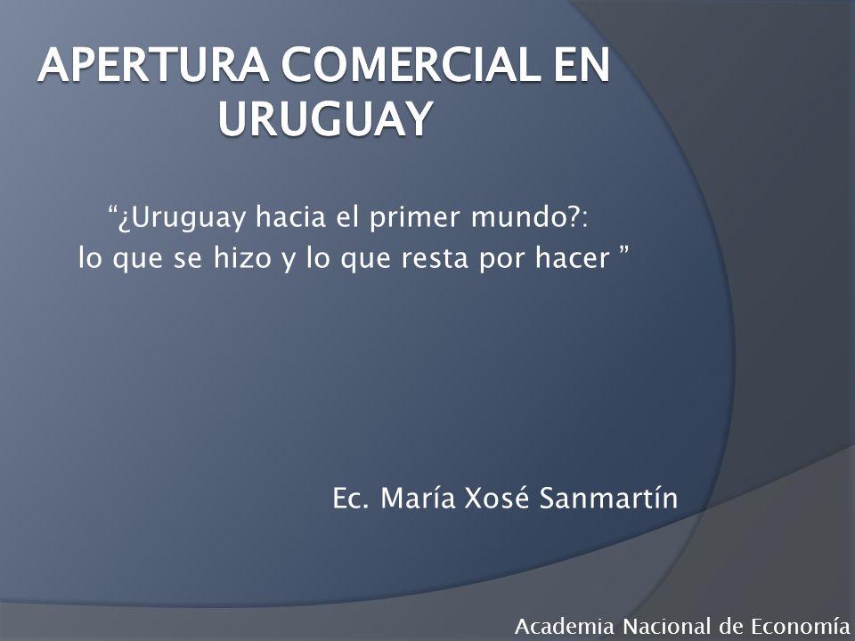 ¿Uruguay hacia el primer mundo?: lo que se hizo y lo que resta por hacer Ec. María Xosé Sanmartín Academia Nacional de Economía