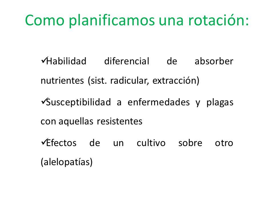 Como planificamos una rotación: Habilidad diferencial de absorber nutrientes (sist. radicular, extracción) Susceptibilidad a enfermedades y plagas con