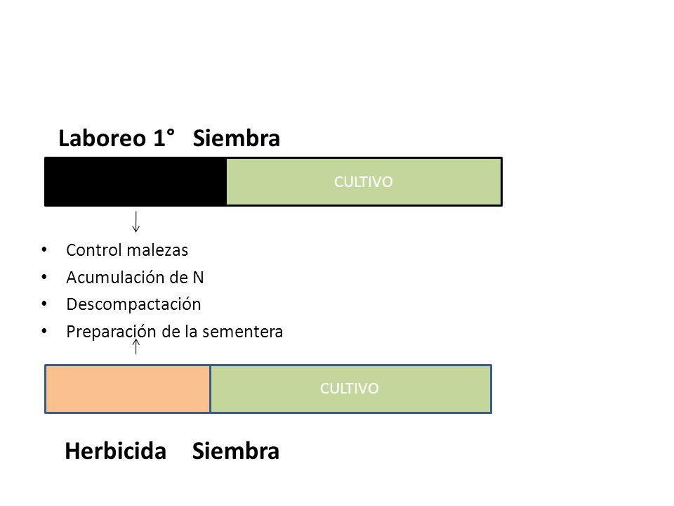 Laboreo 1° Siembra Cultivo Control malezas Acumulación de N Descompactación Preparación de la sementera Herbicida Siembra CULTIVO