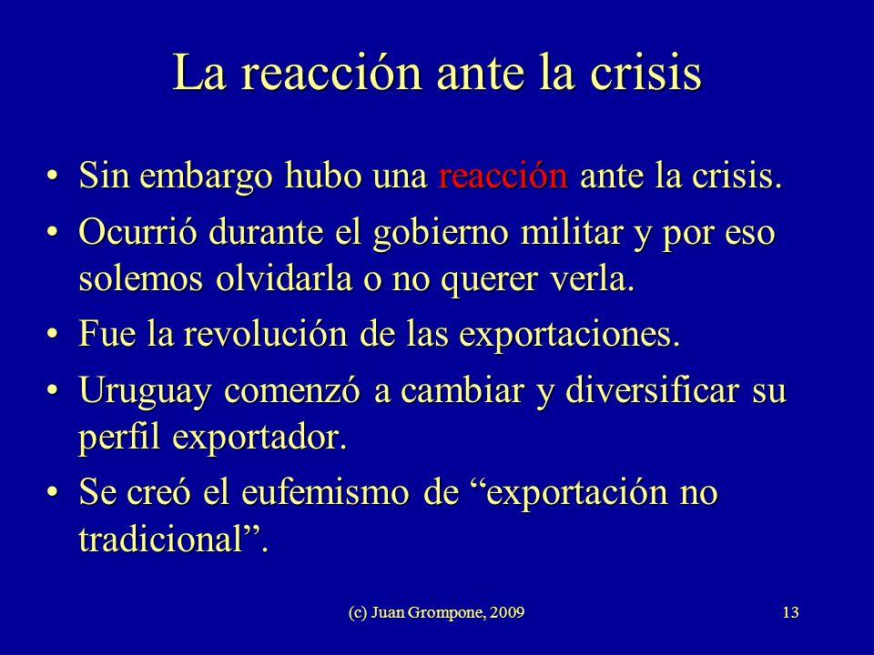 (c) Juan Grompone, 200913 La reacción ante la crisis Sin embargo hubo una reacción ante la crisis.Sin embargo hubo una reacción ante la crisis. Ocurri