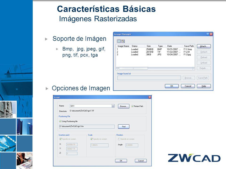 Características Básicas Imágenes Rasterizadas Soporte de Imágen Bmp, jpg, jpeg, gif, png, tif, pcx, tga Opciones de Imagen