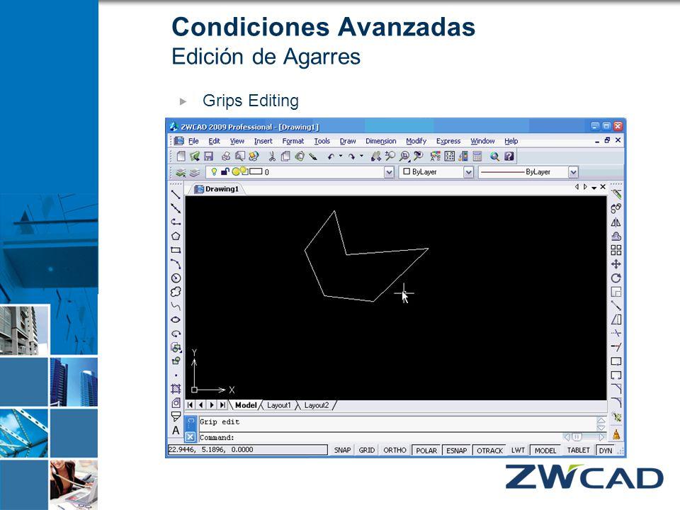 Grips Editing Condiciones Avanzadas Edición de Agarres