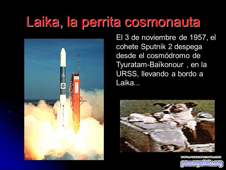 Laika, la perrita cosmonauta El 3 de noviembre de 1957, el cohete Sputnik 2 despega desde el cosmódromo de Tyuratam-Baïkonour, en la URSS, llevando a