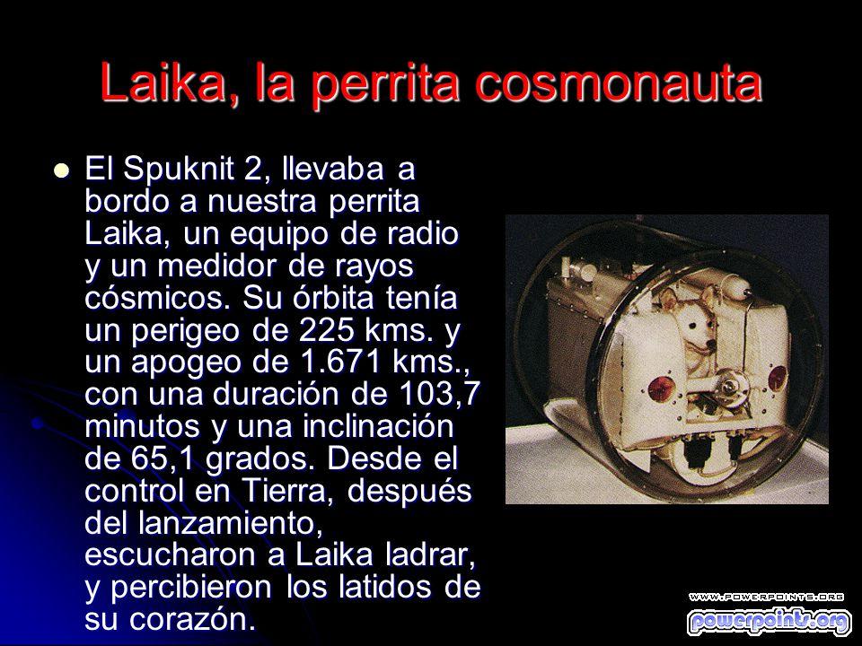 Laika, la perrita cosmonauta El Spuknit 2, llevaba a bordo a nuestra perrita Laika, un equipo de radio y un medidor de rayos cósmicos. Su órbita tenía