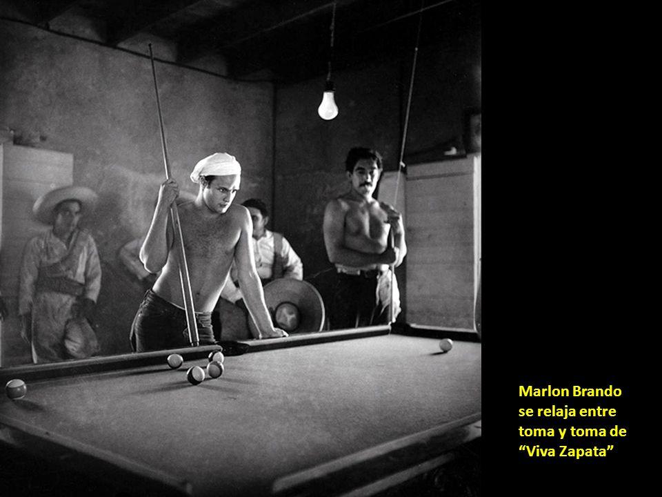 Vidas rebeldes, entre otros, Clift, Monroe, Gable, Huston y Miller.