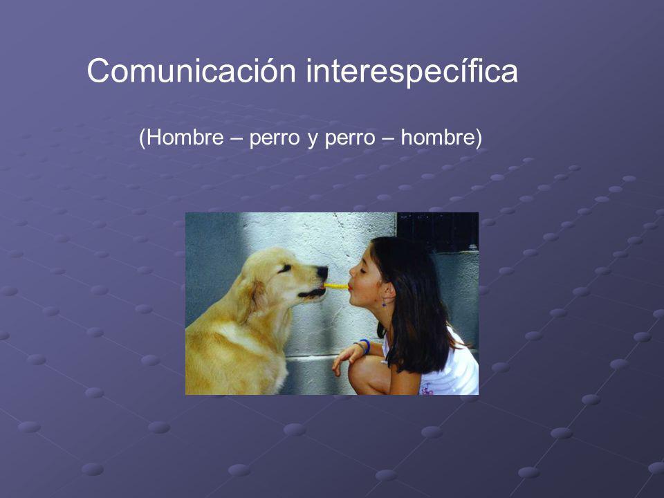 Con respecto a las formas de comunicación es importante que las conozcamos, para así poder transmitirlas. No debemos abusar de esto. Con que hablemos