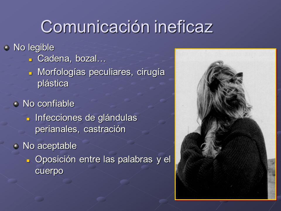 Trastornos de la comunicación La comunicación patógena Entre perros Entre perros Entre perros y los humanos Entre perros y los humanos La comunicación