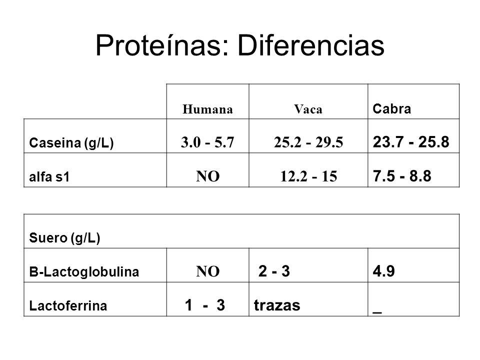 Proteínas: Diferencias HumanaVaca Cabra Caseina (g/L) 3.0 - 5.725.2 - 29.5 23.7 - 25.8 alfa s1 NO12.2 - 15 7.5 - 8.8 Suero (g/L) B-Lactoglobulina NO 2