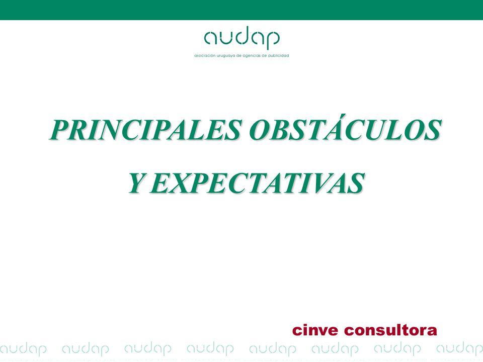 PRINCIPALES OBSTÁCULOS Y EXPECTATIVAS cinve consultora