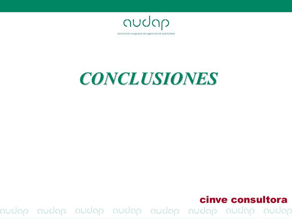 CONCLUSIONES cinve consultora