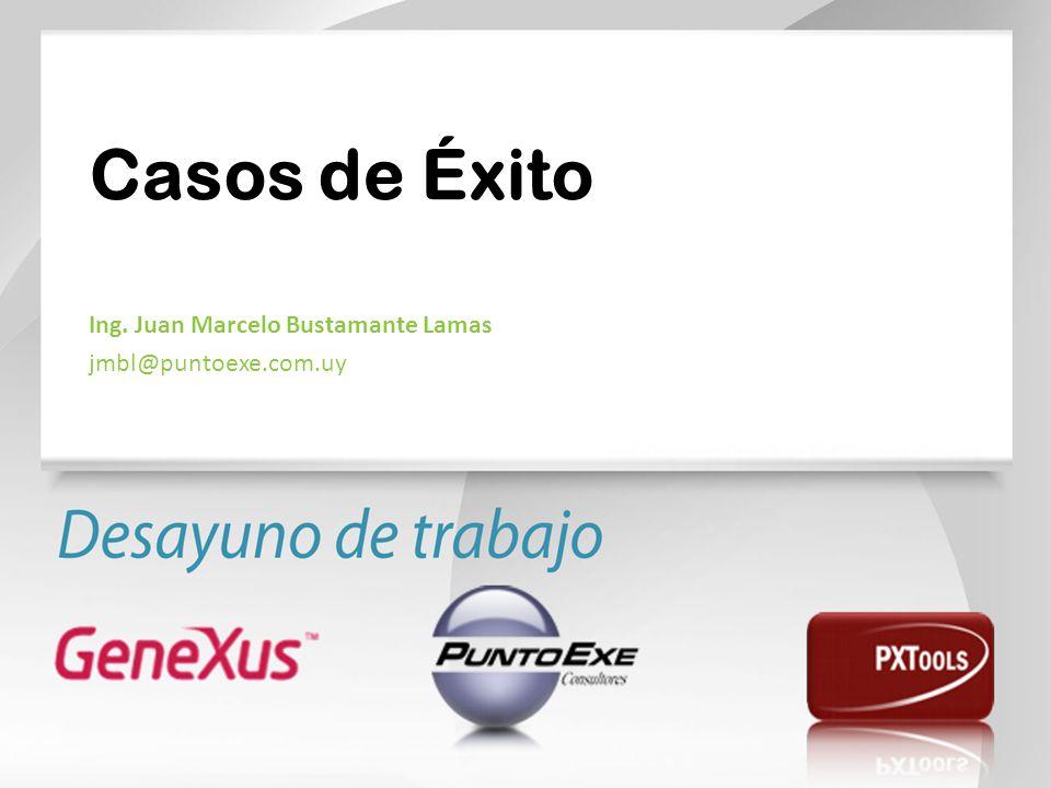 Casos de Éxito Ing. Juan Marcelo Bustamante Lamas jmbl@puntoexe.com.uy