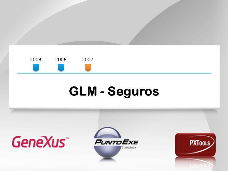 200320062007 GLM - Seguros