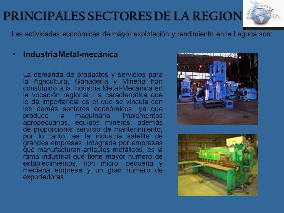 Las actividades económicas de mayor explotación y rendimiento en la Laguna son: Industria Metal-mecánica La demanda de productos y servicios para la A