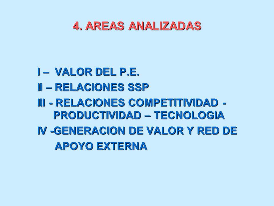 4. AREAS ANALIZADAS I – VALOR DEL P.E. II – RELACIONES SSP III - RELACIONES COMPETITIVIDAD - PRODUCTIVIDAD – TECNOLOGIA IV -GENERACION DE VALOR Y RED