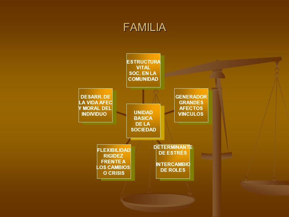 FAMILIA UNIDAD BASICA DE LA SOCIEDAD ESTRUCTURA VITAL SOC.