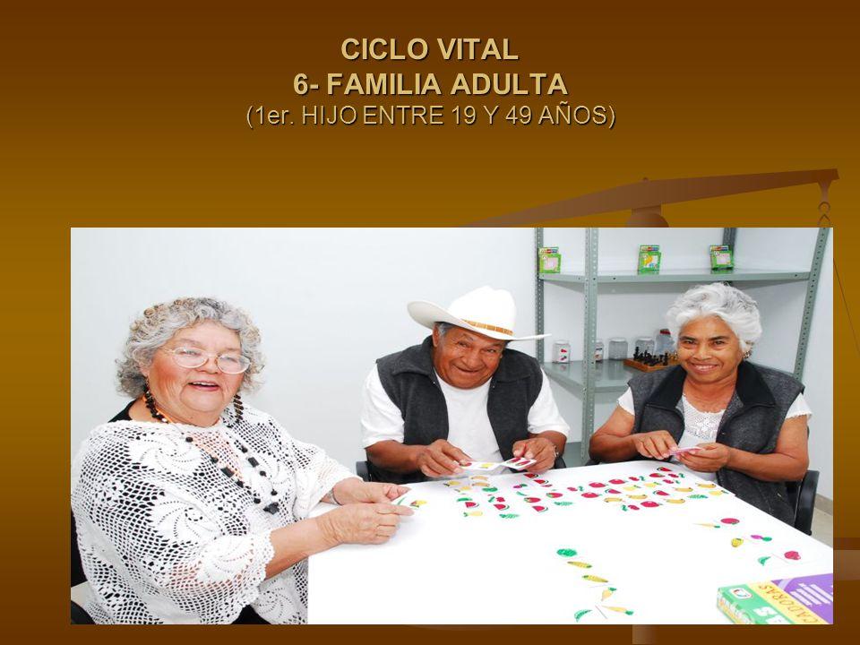 CICLO VITAL 6- FAMILIA ADULTA (1er. HIJO ENTRE 19 Y 49 AÑOS)
