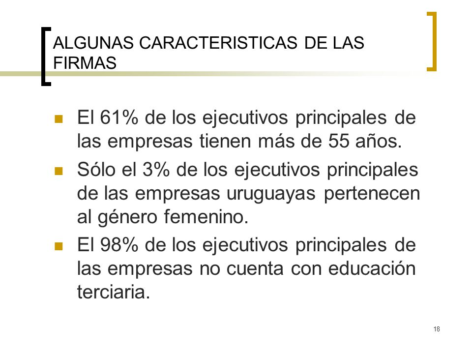 18 ALGUNAS CARACTERISTICAS DE LAS FIRMAS El 61% de los ejecutivos principales de las empresas tienen más de 55 años. Sólo el 3% de los ejecutivos prin
