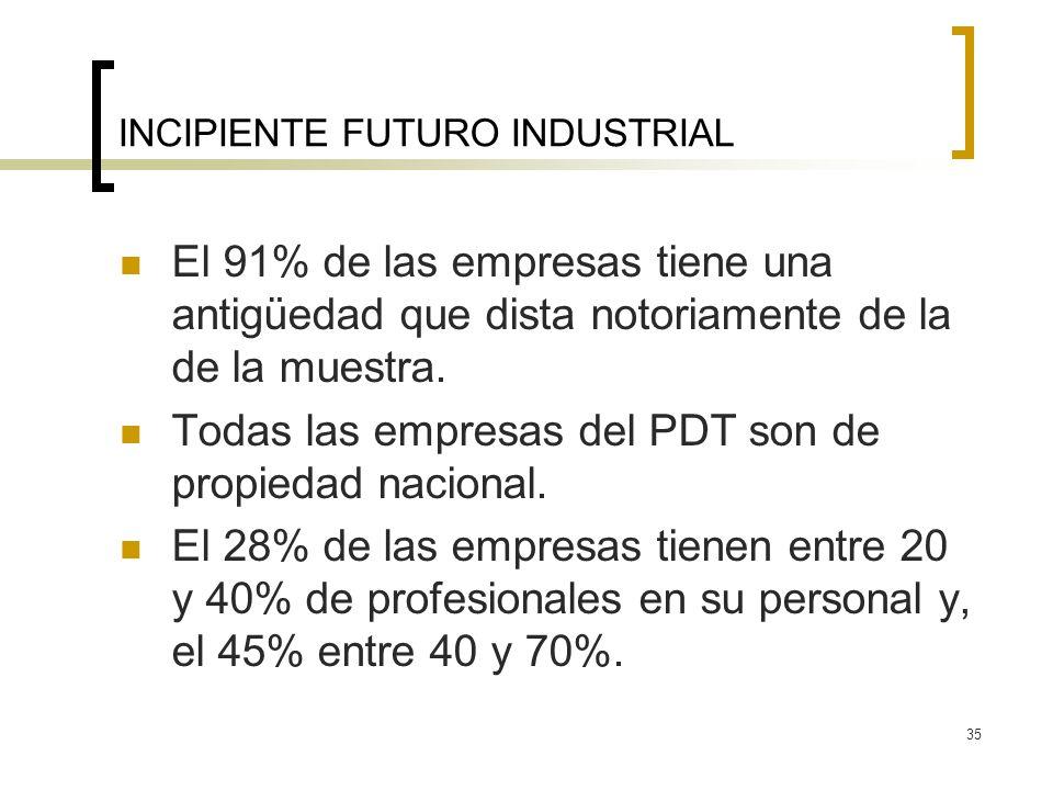35 INCIPIENTE FUTURO INDUSTRIAL El 91% de las empresas tiene una antigüedad que dista notoriamente de la de la muestra. Todas las empresas del PDT son