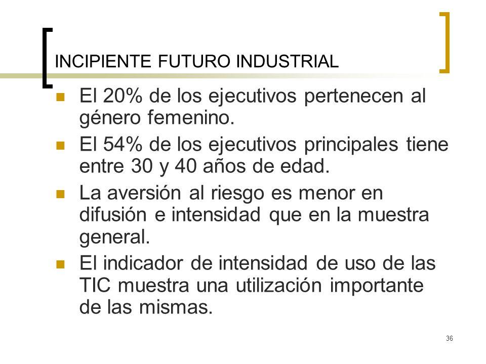 36 INCIPIENTE FUTURO INDUSTRIAL El 20% de los ejecutivos pertenecen al género femenino.