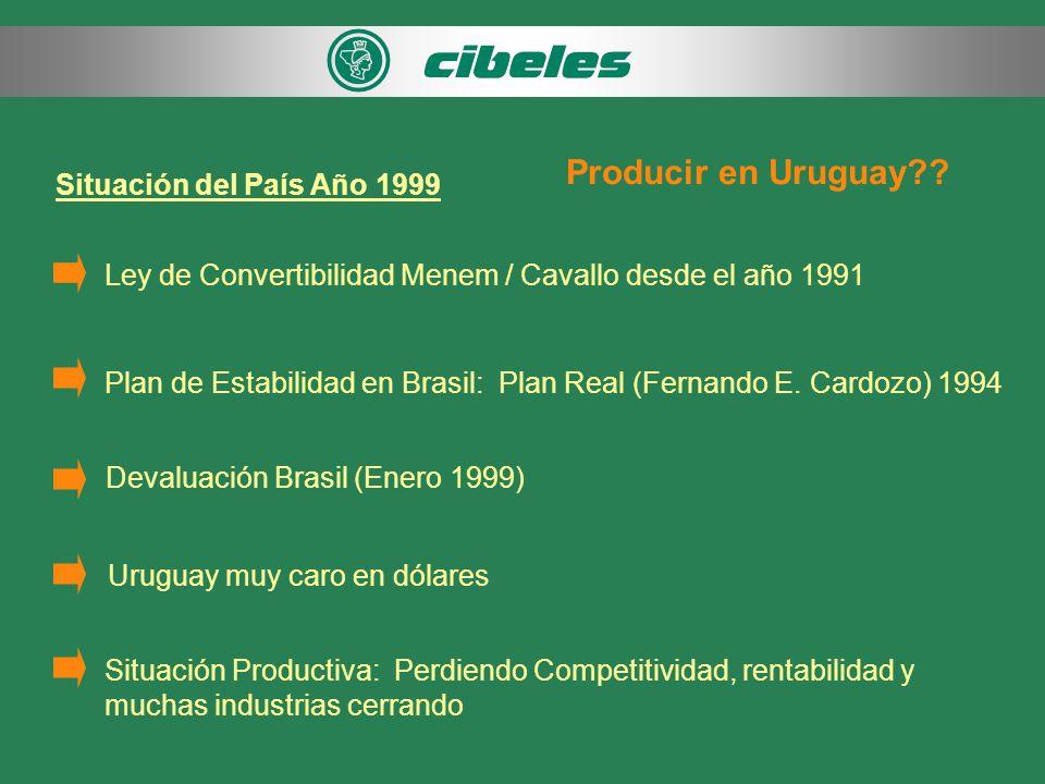 Situación del País Año 1999 Ley de Convertibilidad Menem / Cavallo desde el año 1991 Plan de Estabilidad en Brasil: Plan Real (Fernando E.