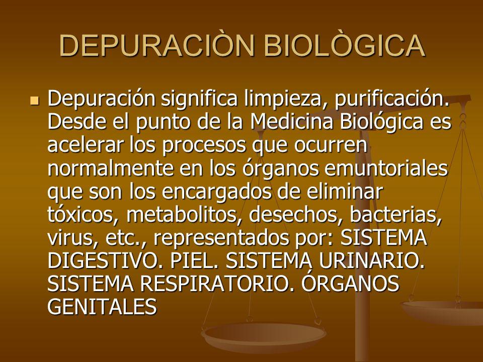 DEPURACIÒN BIOLÒGICA Depuración significa limpieza, purificación. Desde el punto de la Medicina Biológica es acelerar los procesos que ocurren normalm
