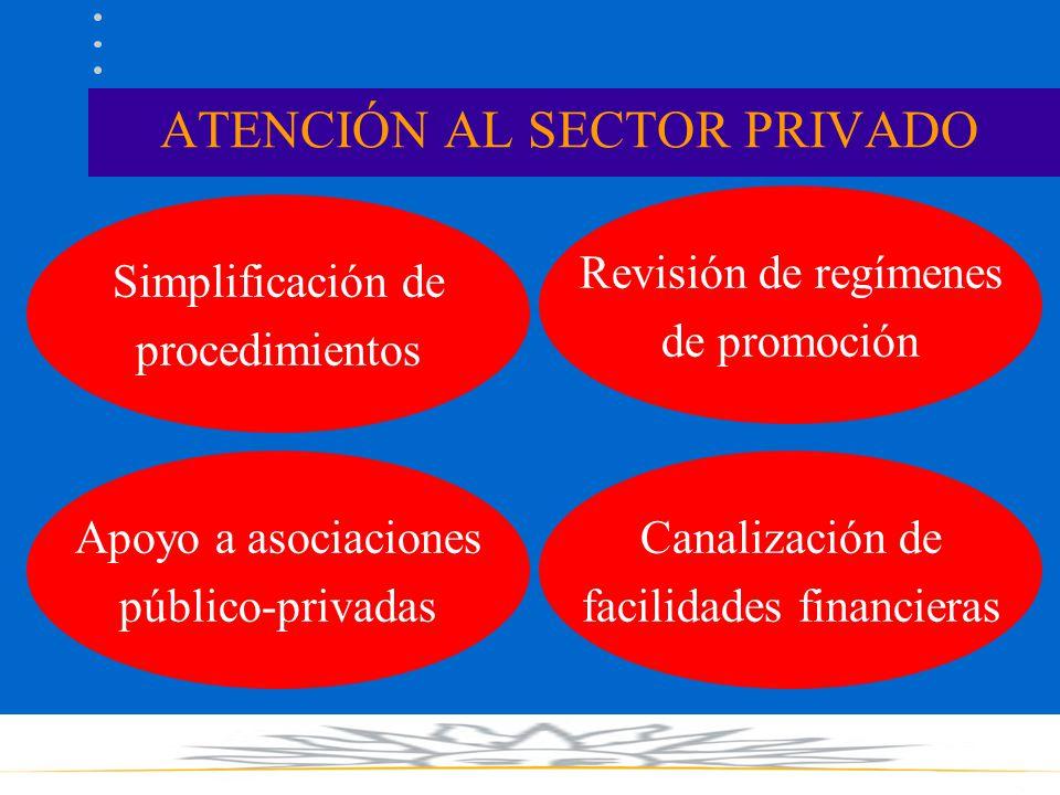 ATENCIÓN AL SECTOR PRIVADO Simplificación de procedimientos Revisión de regímenes de promoción Apoyo a asociaciones público-privadas Canalización de facilidades financieras