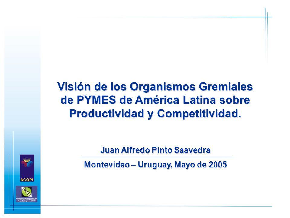 Visión de los Organismos Gremiales de PYMES de América Latina sobre Productividad y Competitividad. Juan Alfredo Pinto Saavedra Montevideo – Uruguay,