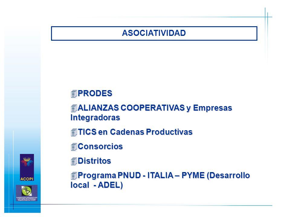 4PRODES 4ALIANZAS COOPERATIVAS y Empresas Integradoras 4TICS en Cadenas Productivas 4Consorcios 4Distritos 4Programa PNUD - ITALIA – PYME (Desarrollo
