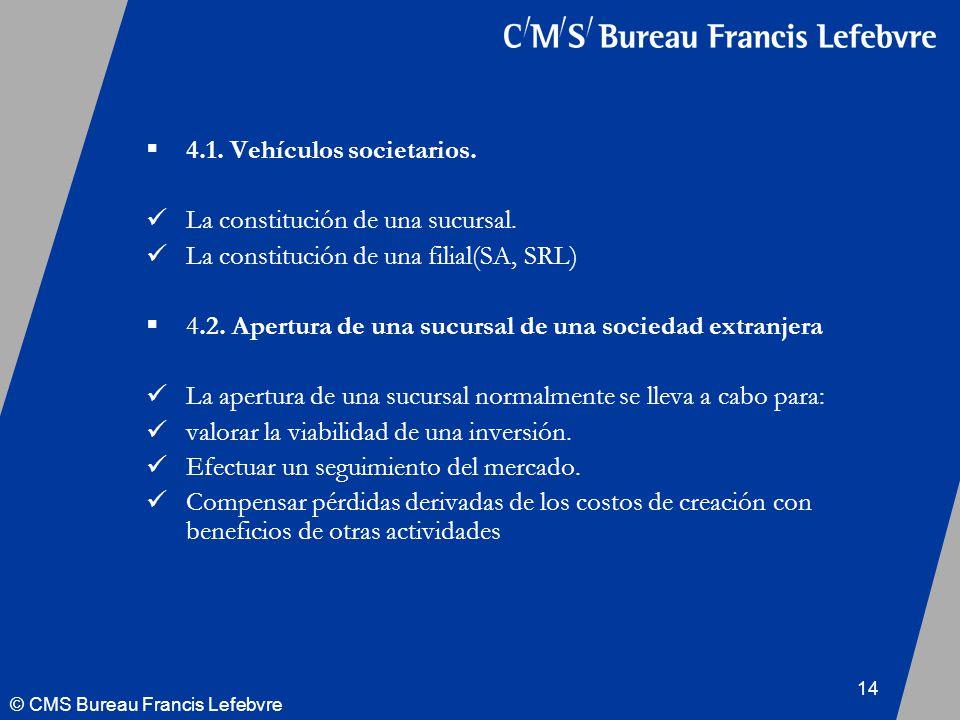 © CMS Bureau Francis Lefebvre 14 4.1. Vehículos societarios.