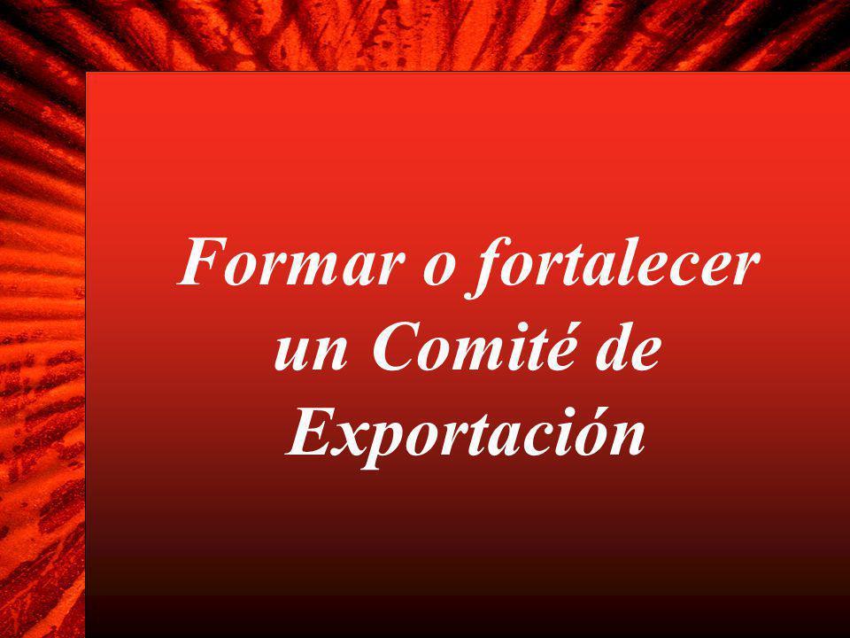 Formar o fortalecer un Comité de Exportación