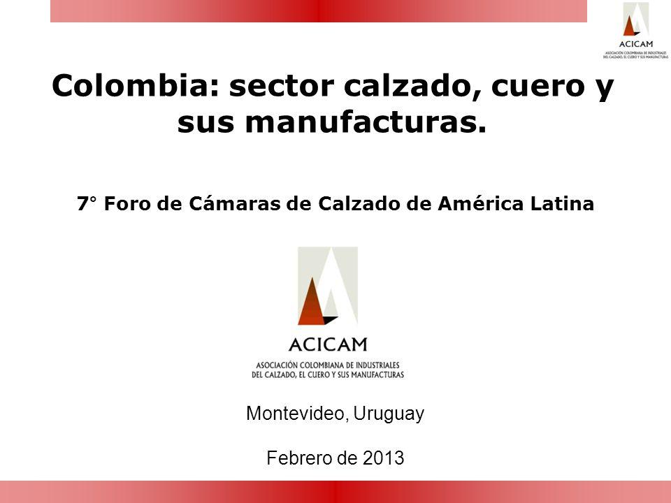 Colombia: sector calzado, cuero y sus manufacturas. Montevideo, Uruguay Febrero de 2013 7° Foro de Cámaras de Calzado de América Latina