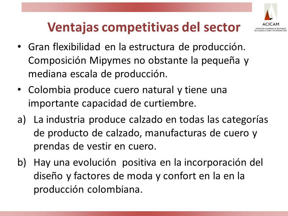Ventajas competitivas del sector Gran flexibilidad en la estructura de producción. Composición Mipymes no obstante la pequeña y mediana escala de prod