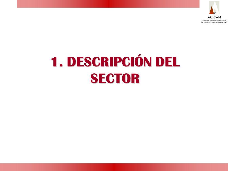 DESCRIPCIÓN DEL SECTOR 1.