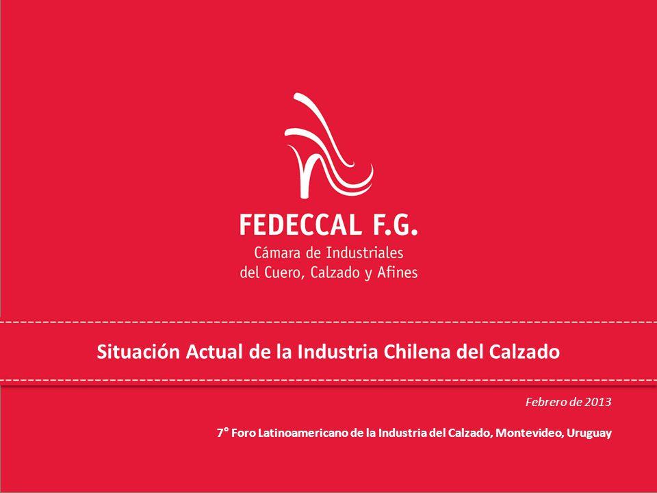 Situación Actual de la Industria Chilena del Calzado Febrero de 2013 7° Foro Latinoamericano de la Industria del Calzado, Montevideo, Uruguay