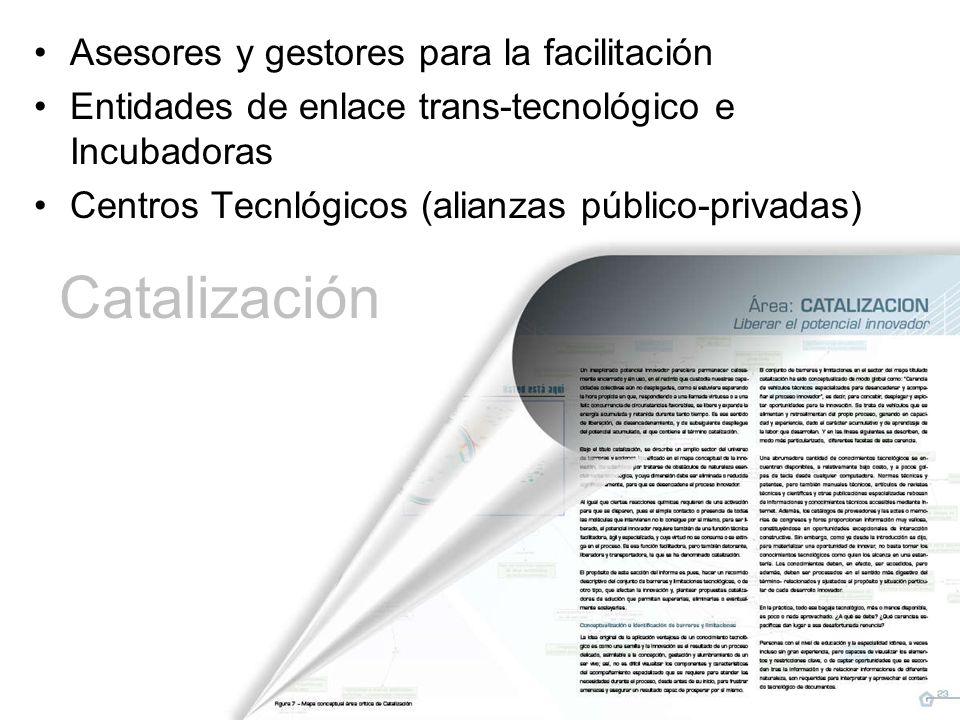 Catalización Asesores y gestores para la facilitación Entidades de enlace trans-tecnológico e Incubadoras Centros Tecnlógicos (alianzas público-privadas)