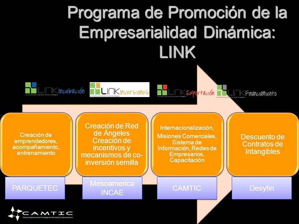 Creación de emprendedores, acompañamiento, entrenamiento Creación de Red de Ángeles Creación de incentivos y mecanismos de co- inversión semilla Inter