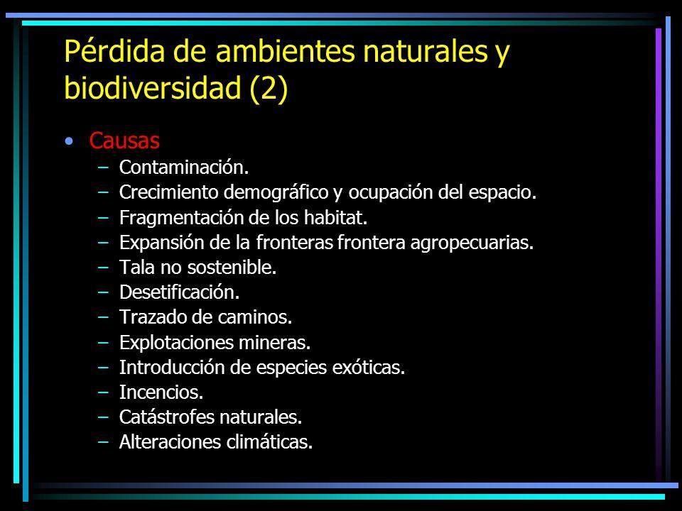 Pérdida de ambientes naturales y biodiversidad (2) Causas –Contaminación. –Crecimiento demográfico y ocupación del espacio. –Fragmentación de los habi